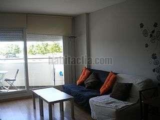 Alquiler Piso en Besalu,164. -apartamento de obra nueva a estrenar con piscina