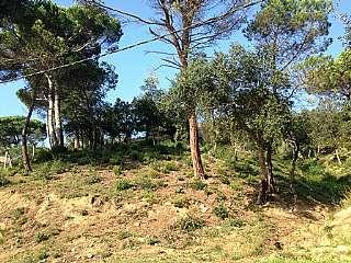 Terreno residenziale in Carrer muntanya, sn. Estupendo terrerno en urb. les ferreres en Tordera