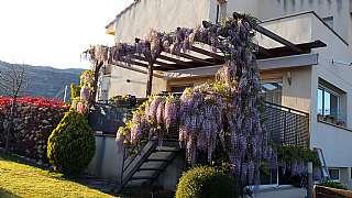 Casa pareada en Carrer cami de sant joan, 10. Casa pareada cornudella de montsant