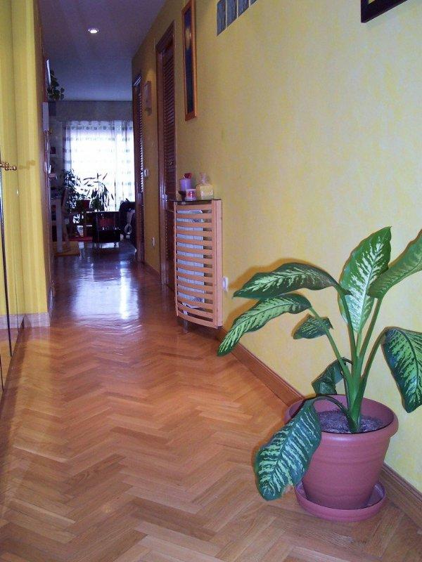 Alquiler piso por 825 en pasaje de cuenca precioso for Pisos baratos en cuenca