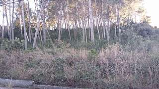 Terreny residencial a Carrer osona (c.paulet 2a.f), sn. Espectacular terreno