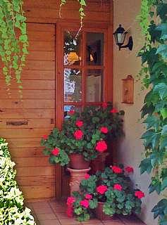 Casa adosada en Carrer alexandre gali i coll, 27. Acollidora casa pirinenca