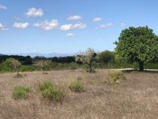 Rural plot in Carrer tortova, s/n