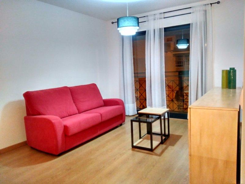 pisos alquiler alicante particulares