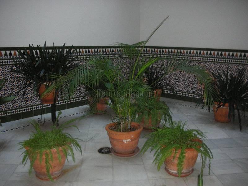 Alquiler estudio por 380 centro san lorenzo en sevilla for Alquiler sevilla centro