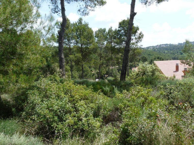 Alquiler casas bages alquiler casas 3 dormitorios sant for Pisos alquiler suria